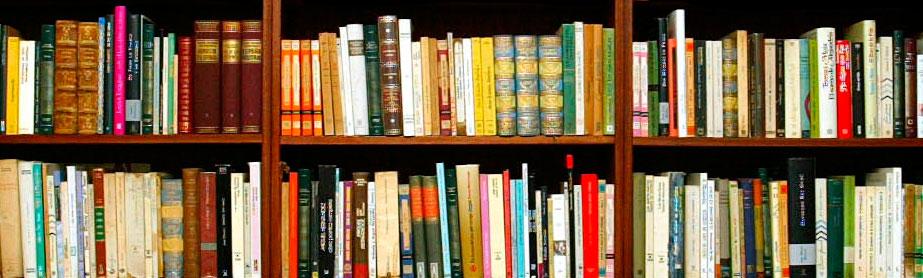 Universidades en cantabria universidades en santander for Uned biblioteca catalogo