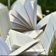Tertulias Literarias: Literatura Contemporánea. Grupo de Tarde.
