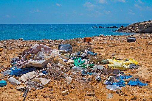 Principales problemas medioambientales del mundo actual: una visión multidisciplinar